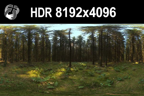 Click to enlarge image HDR_162_Forest_0preview.jpg