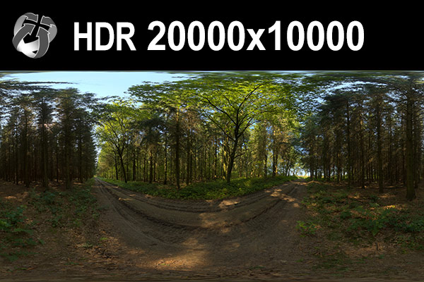 Click to enlarge image HDR_152_0Forest_preview_20k.jpg