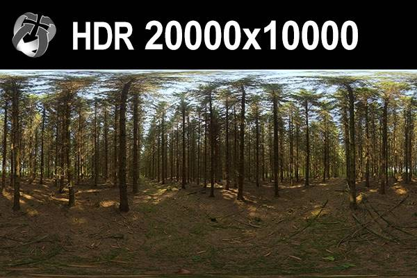 HDR 153 Forest 20k