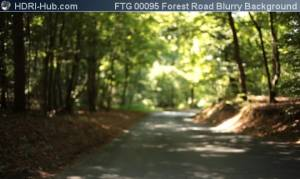 Forest Road Blurry Background - Locked camera pointing at a road in a forest. Strong bokeh effect.