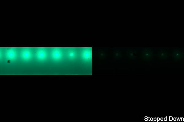 HDR Light Floor LED Stripe green