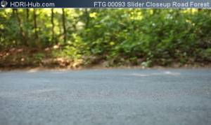 Slider Closeup on Road in Forest