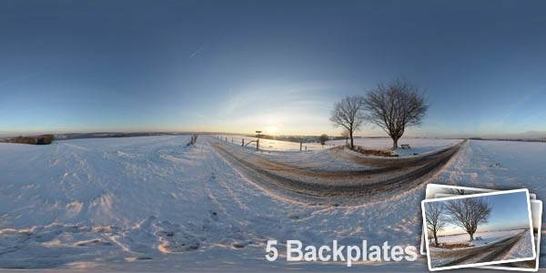 HDR 092 Road Winter Plates - Layout License