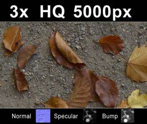 3x Leaves on Sand 1 - Three high resolution sand textures with leaves. Seamless and tileable! Color/Normal/Specular/Bump Maps included