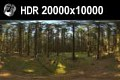 HDR 161 Forest 20k - Hdr environment in a forest. Super high resolution 20000px.